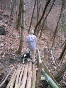 樽本の滝-遊歩道